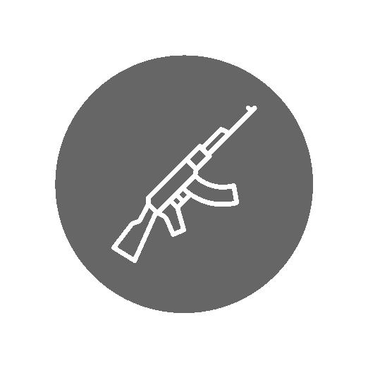 Gun Inventory