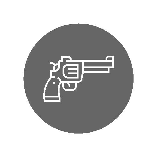 Guns On Sale